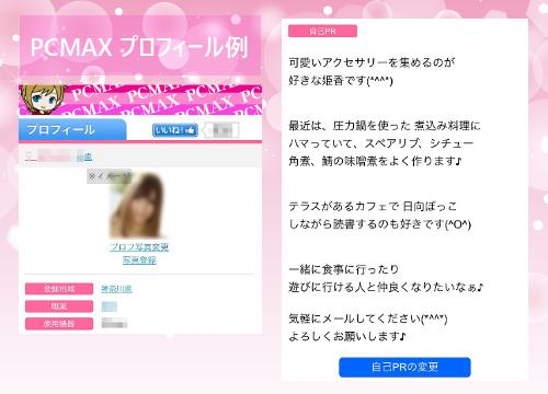 PCMAXプロフィール例